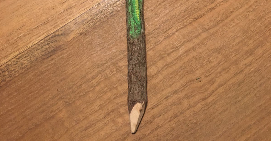 Bleistift Cameleon