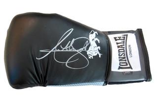 Boxhandschuh Joshua
