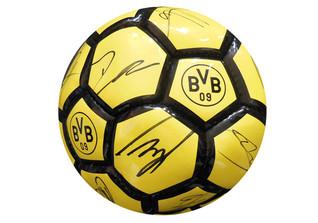 BVB Fußball