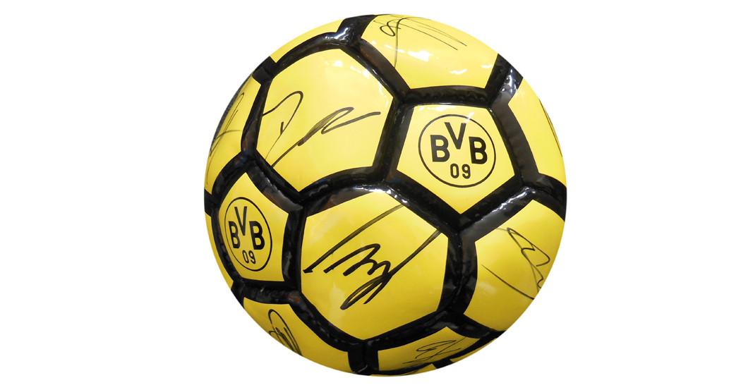 Bvb Fussball