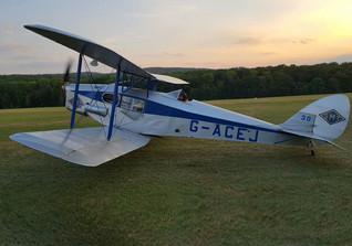 Flight Fox Moth