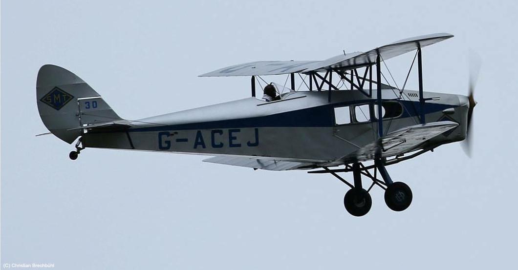 Flug Fox Moth