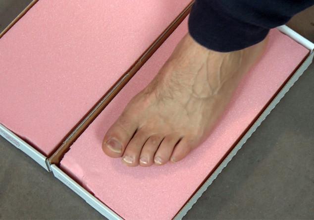 Fußabdruck von Robben