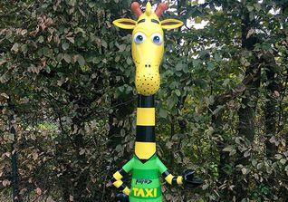Giraffe Rufus