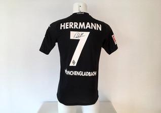 Gladbach Trikot Herrmann