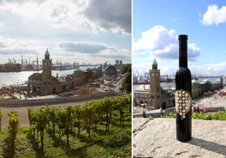 Hamburg Wein III