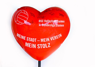 Herz DSC Volleyball