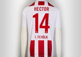 Köln Trikot Hector