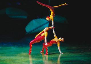 Ovo Cirque du Soleil 1