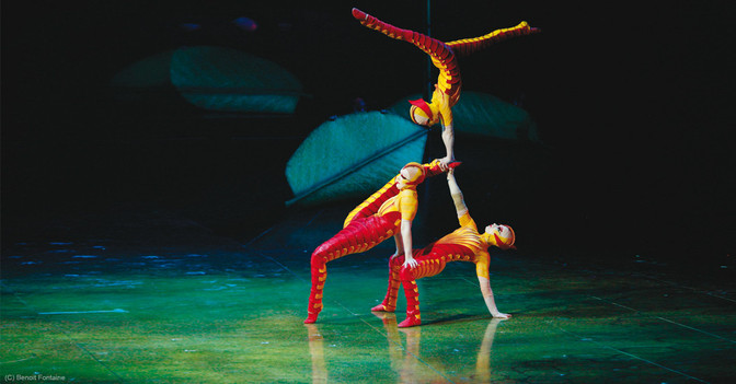 Ovo Cirque du Soleil - 1