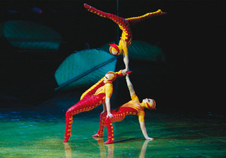 Ovo Cirque du Soleil 2