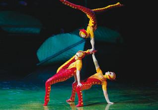 Ovo Cirque du Soleil 4