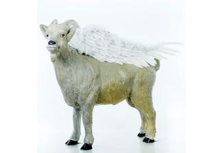 Pegasus und FC Gala