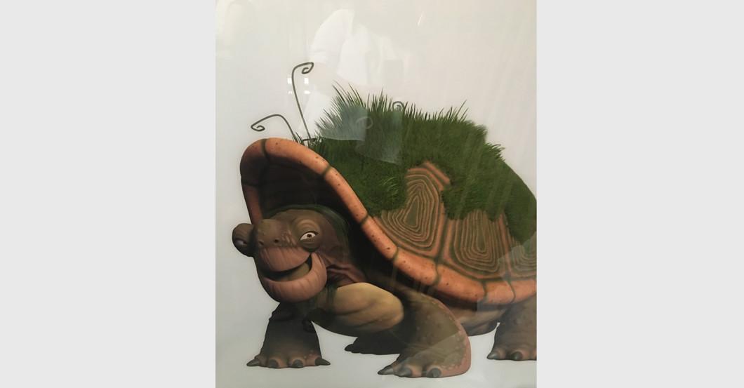 Tabaluga Schildkröte