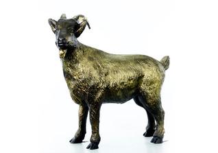 Schwarzes Gold Bock