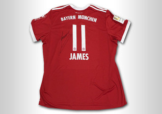 Signiertes Trikot James