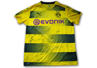 Trikot BVB teamsigniert