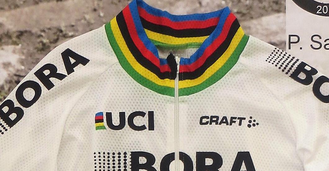 Von Radstar Peter Sagan handsigniertes & gerahmtes Trikot
