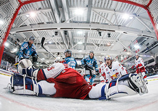 Zum Eishockey Topspiel