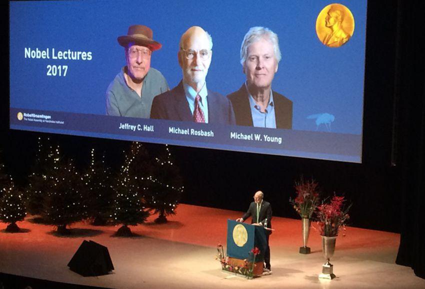 Nobelpreisvorlesung