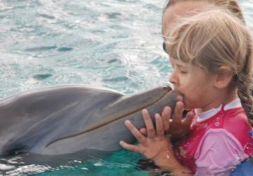 Kranke Kinder sollen durch die Arbeit mit Delphinen schneller und mit größerer Intensität lernen