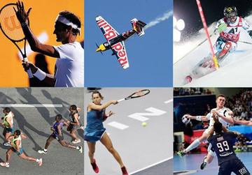 Österreichische Sporthilfe - Unbürokratische Hilfe für SpitzensportlerInnen mit und ohne körperliche Behinderung