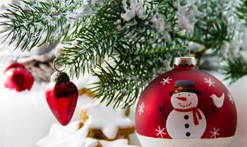 Die spektakulärsten Weihnachtsgeschenke für den guten Zweck