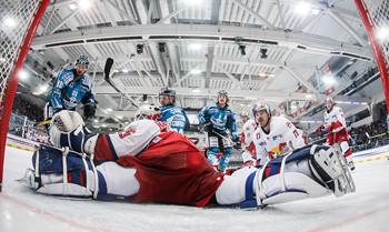 Einmalige Weihnachtsgeschenke für österreichische Sport-Fans