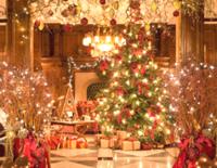 Luxus-Weihnachten