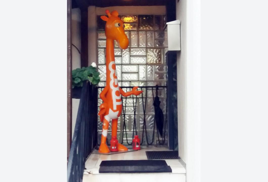 Die Giraffe Toggolino vor der Haustür