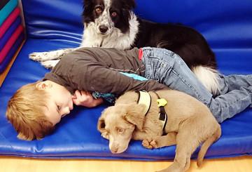 Beschützerinstinkte e.V. unterstützt tiergestützte Therapie für Kinder